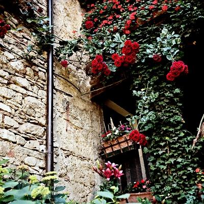 Pieve di San Pietro di Roffeno a Castel d'Aiano - Particolare di una casa - Detail of a house - Kodak Portra 160 NC
