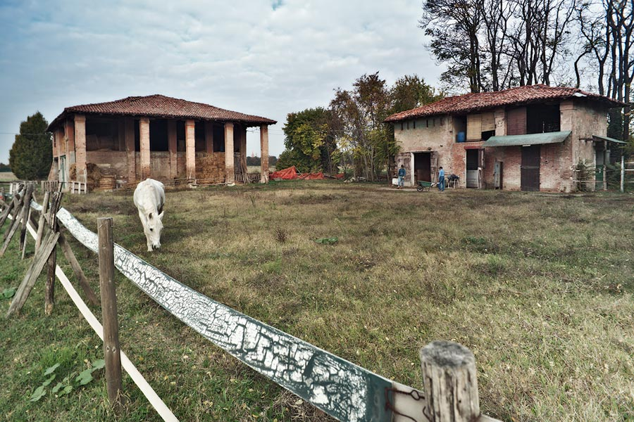 Farm in Calderara Bologna